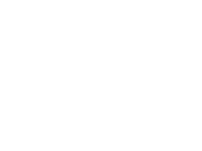 2016 Seattle Film Festival | Grand Jury Prize